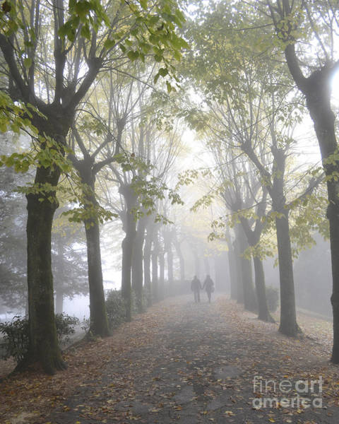 Love In The Mist Photograph - Tuscany Love by Rebecca Margraf