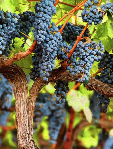 Painting - Tuscany Vineyards - 04  by Andrea Mazzocchetti