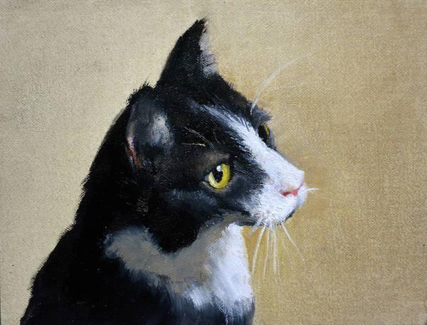 Tuxedo Cat Painting - Tuxedo by Armand Cabrera
