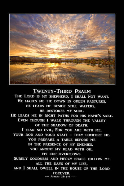 Photograph - Twenty-third Psalm Prayer by James BO Insogna