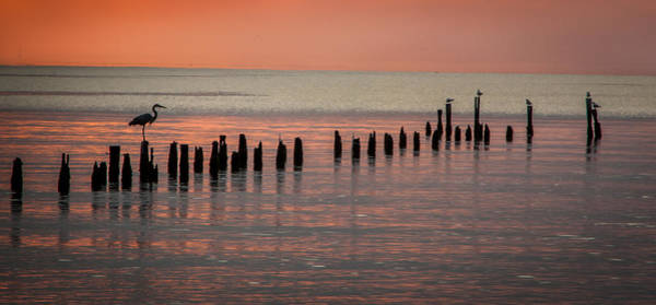 Photograph - Twilight Colors by James Woody