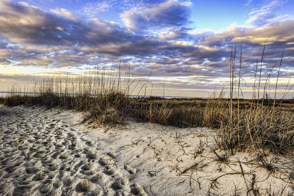 Photograph - Twilight Dune by Pete Federico