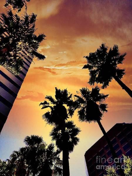 Photograph - Twilight In The City by Jenny Revitz Soper