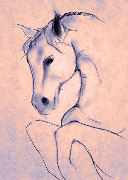 Warmbloods Drawing - Twilight by Jennifer Fosgate