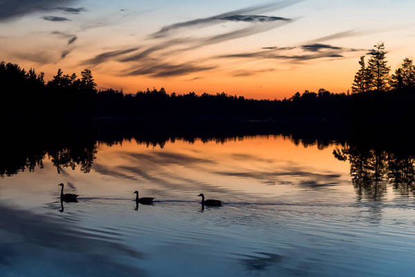 Lakehurst Photograph - Twilight Lake Swim New Jersey by Terry DeLuco