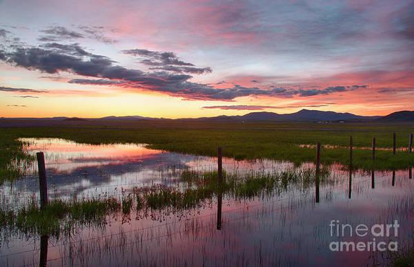Wall Art - Photograph - Twilight On The Marsh by Idaho Scenic Images Linda Lantzy