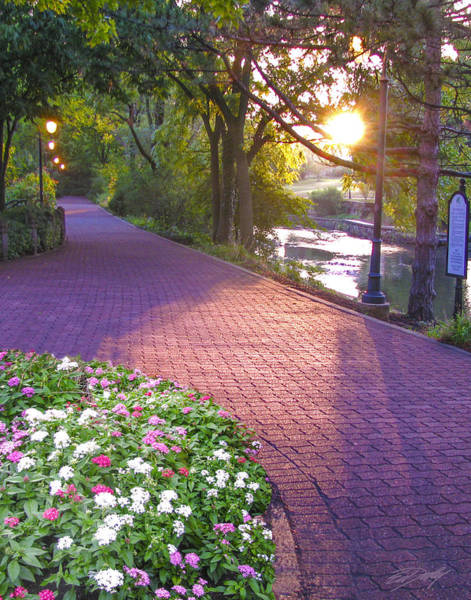 Photograph - Twilight On The Riverwalk by Ed Dooley