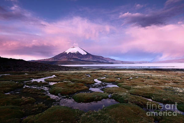 Photograph - Twilight Over Parinacota Volcano And Lake Chungara Chile by James Brunker