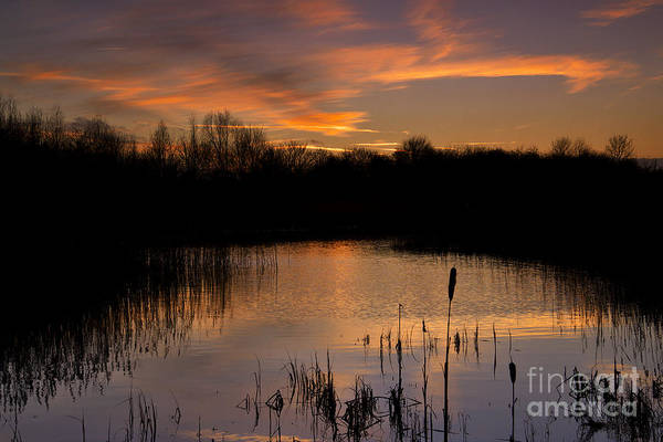 Photograph - Twilight Reflections by Martyn Arnold