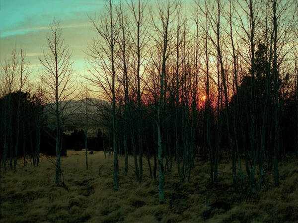 Photograph - Twilight by Stephen Andersen