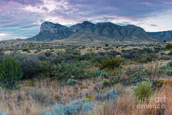Photograph - Twilight View Of El Capitan And Guadalupe Peak - Guadalupe Mountains National Park West Texas by Silvio Ligutti