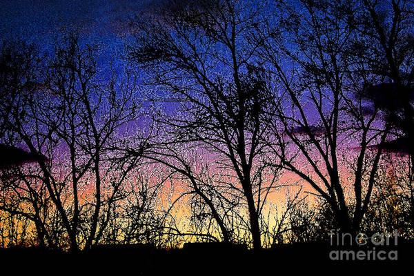 Digital Art - Twilight Winter Trees by Karen Adams