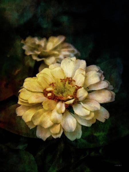 Photograph - Twilight Zinnia 3731 Idp_2 by Steven Ward