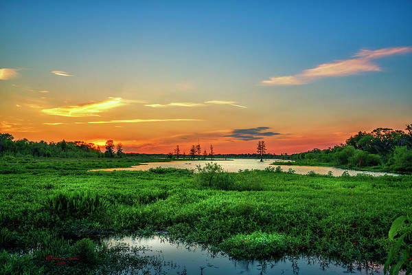 Swamp Photograph - Twilights Arrival by Marvin Spates