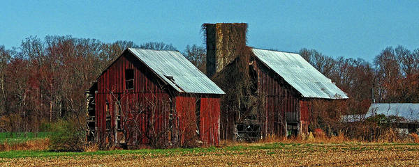 Photograph - Twin Barns Of Queen Anne's County by Bill Swartwout Photography