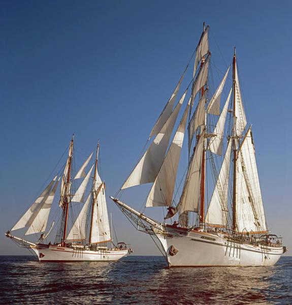 Photograph - Twin Tallships At Sea by Cliff Wassmann