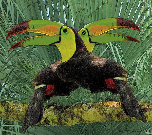 Belize Digital Art - Twin Toucans by Larry Linton