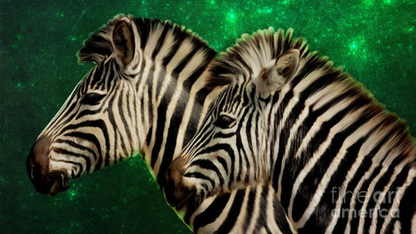 Digital Art - Twin Zebras With A Green Fractal Background by Tracey Everington