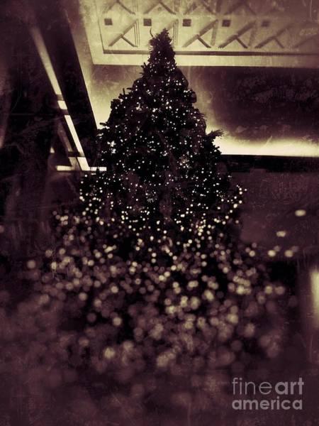 Photograph - Twinkle Tree by Jenny Revitz Soper