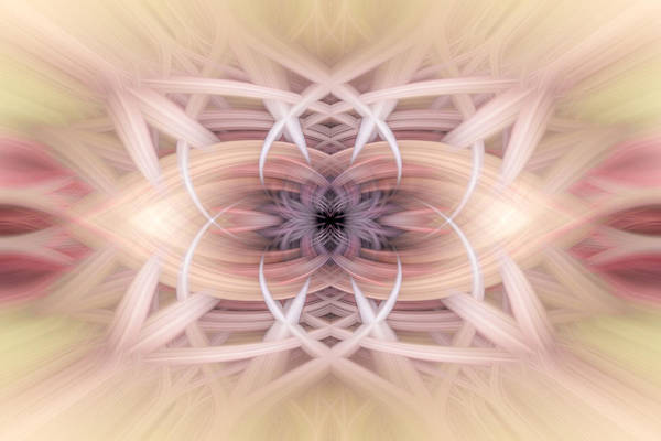Digital Art - Twirling Web 112 by Mary Almond