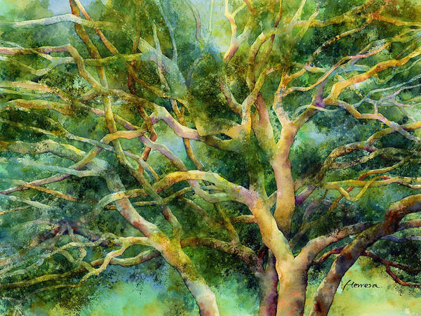 Wall Art - Painting - Twisted Oak by Hailey E Herrera