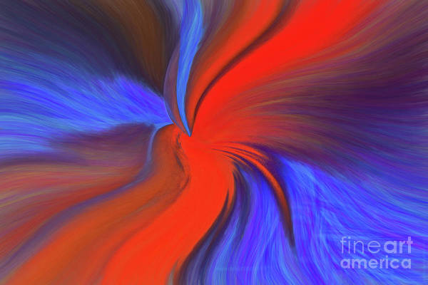 Photograph - Twisted by Patti Schulze