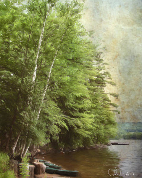 Adirondack Mountains Digital Art - Two Birches by Christopher Meade