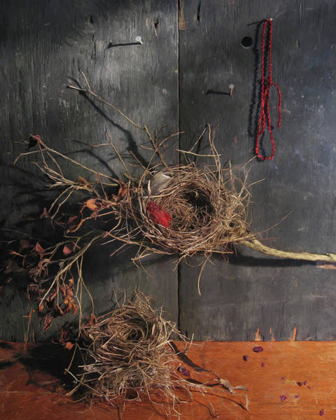 Empty Nest Wall Art - Painting - Two Bird Nests by Lynne Mitchell