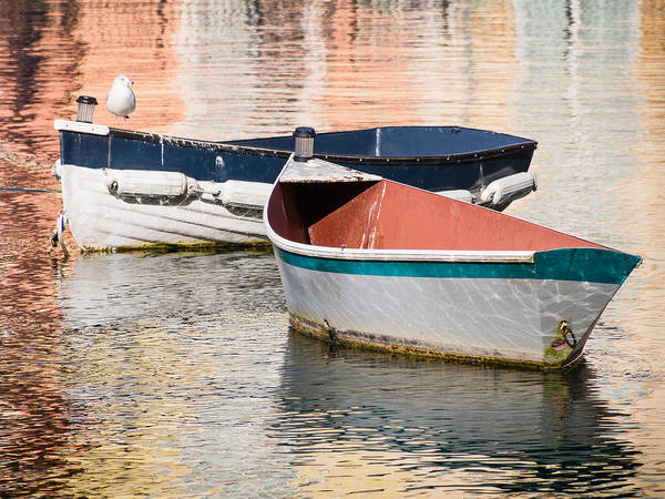 Photograph - Two Boats by Robin Zygelman