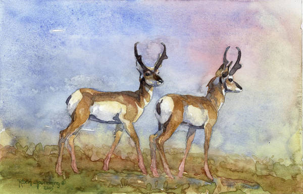 Pronghorn Antelope Wall Art - Painting - Two Boys Pronghorns by Robert Spannring