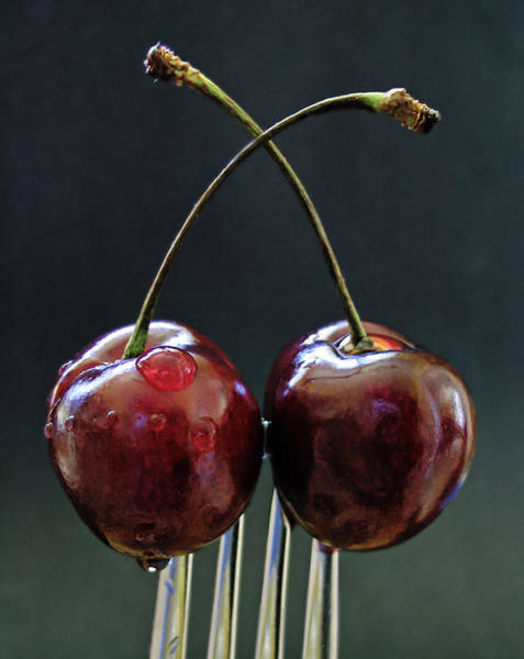 Cerise Photograph - Two Cherries Are Better Than One by Maggie Terlecki