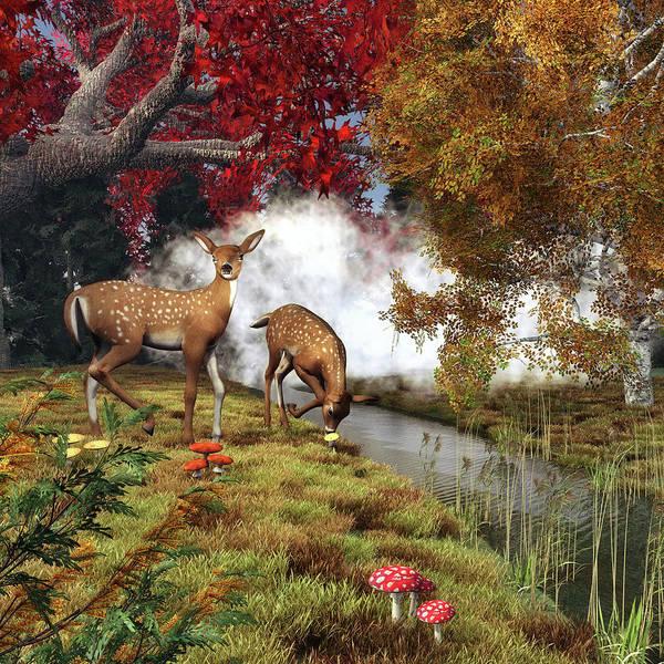 Swan Boats Digital Art - Two Deers by Jan Keteleer