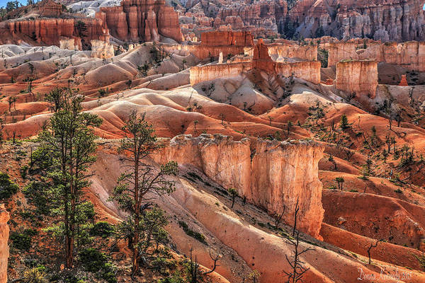 Hoodoos Photograph - Two Doors Down by Donna Kennedy