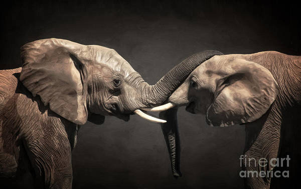 Digital Art - Two Elephants by Angela Doelling AD DESIGN Photo and PhotoArt