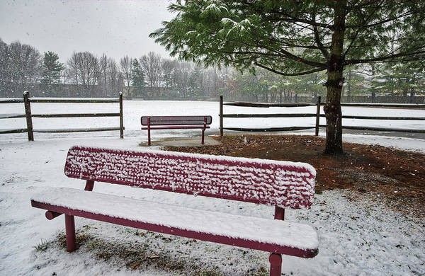 Photograph - Two Empty Benches In The Snow by Gary Slawsky
