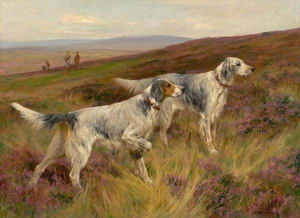 Painting - Two English Setters On A Grouse Moor by Celestial Images