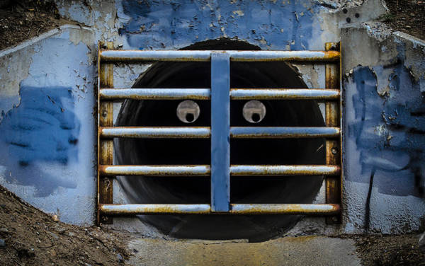 Photograph - Two Eyed River Grate by Rick Mosher