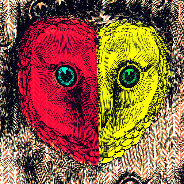 Bird Watching Digital Art - Two Face Owl by Brandi Fitzgerald