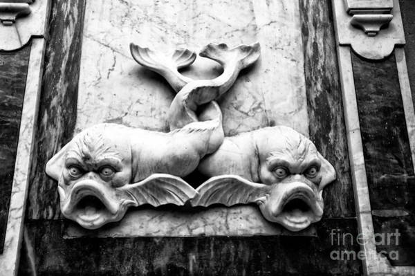 Wall Art - Photograph - Two Fish In Sorrento  by John Rizzuto
