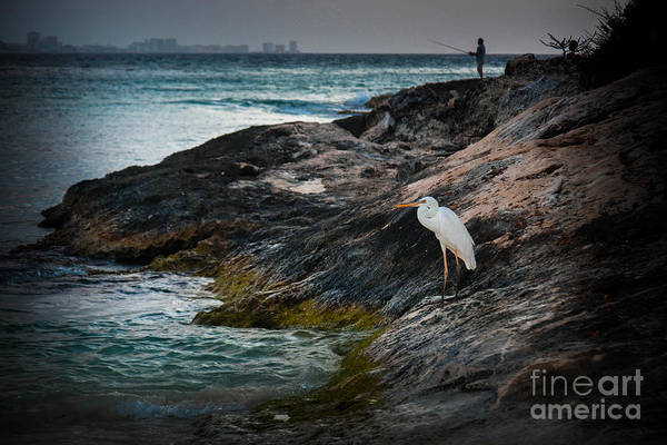 Photograph - Two Fisherman by Gary Keesler