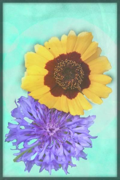 Digital Art - Two Flowers by Rusty R Smith