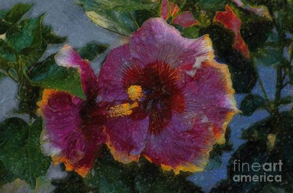 Photograph - Two Grand Passion Hibiscus by John  Kolenberg