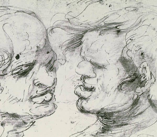 Face Drawing - Two Heads by Leonardo Da Vinci