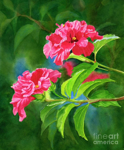 Wall Art - Painting - Two Hibiscus Rosa Sinensis Blossoms With Background by Sharon Freeman