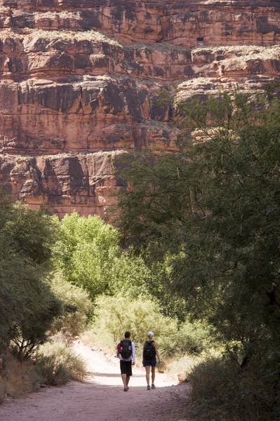 Desert Varnish Photograph - Two Hikers Along A Trail In The Grand by Taylor S. Kennedy