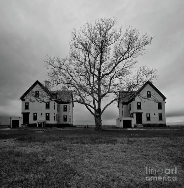 Photograph - Two Houses And A Tree by Mark Miller