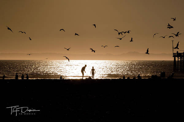 Photograph - Two In Sun by T A Davies