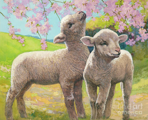 Happy Little Trees Painting - Two Lambs Eating Blossom by Van der Syde