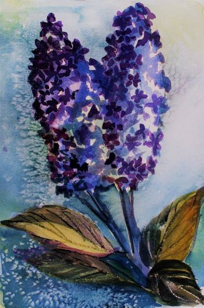 Wall Art - Painting - Two Lilacs by Mindy Newman