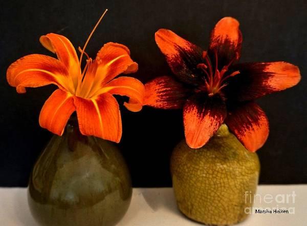 Wall Art - Photograph - Two Lilies by Marsha Heiken